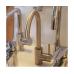 Imprese LOTTA смеситель для кухни 55401-SS , сталь, 35 мм